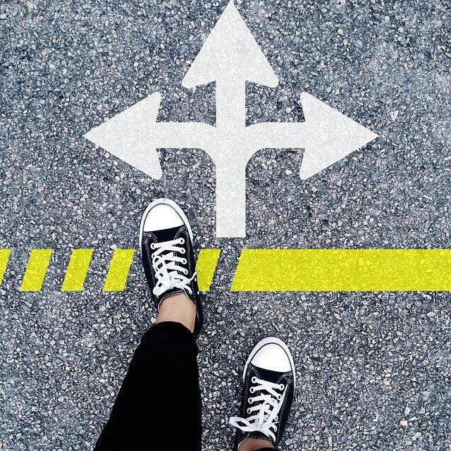 Välj väg framåt och utveckla lönsamheten.